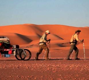desert-cart-310x280